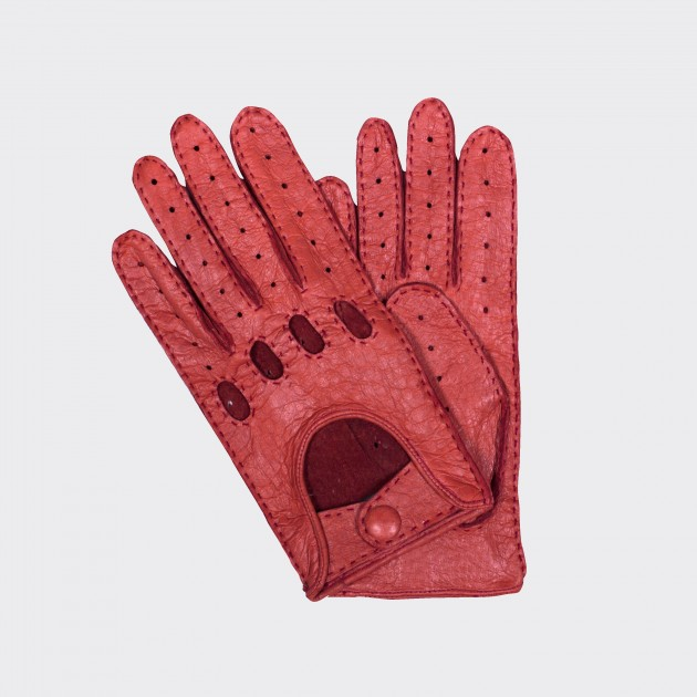 Driving Gloves : Pecari