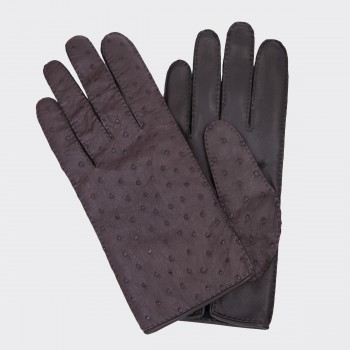 Ostrich Gloves: Brown