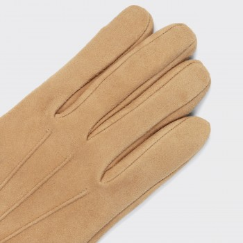 Suede Cashmere lined Gloves : Camel